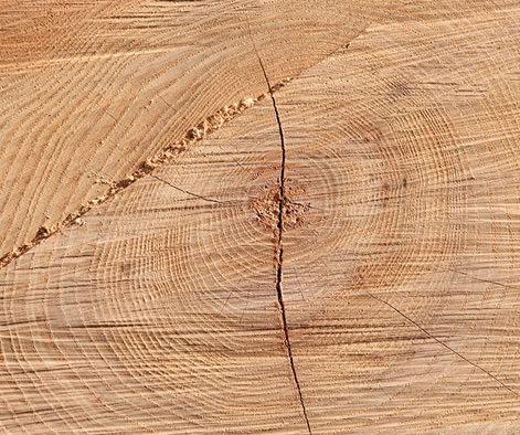 Liebe zu Holz